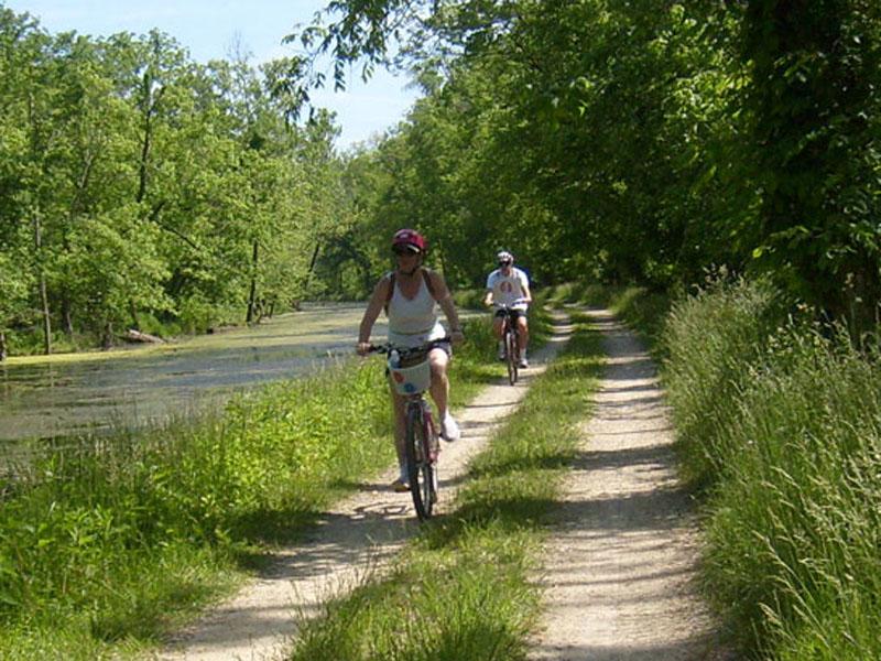 Location de vélos à Caunes-Minervois
